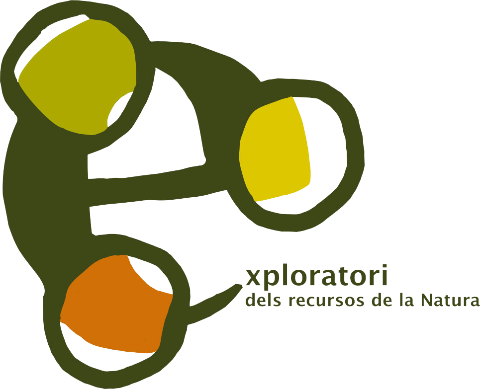 logo-exploratori_transparent.png